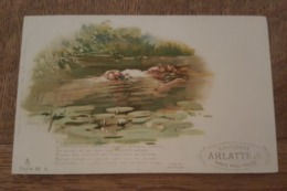 Illustrateur - Raphael Tuck - Un Mot à La Poste, Série 66. 9 - Théâtre Hamlet, Harold Copping Ill. Pub Chicorée Arlatte - Tuck, Raphael