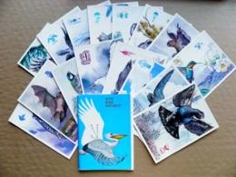 16 Post Cards Cartes In Folder Ussr 1978 Who Like To Fly Birds Oiseaux Lizard Frog Bat Rodent Fish - Vögel