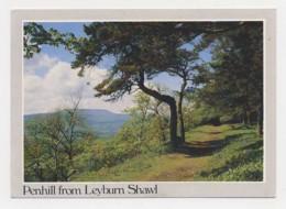 AJ21 Penhill From Leyburn Shawl - Engeland