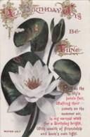 AL78 Greetings - Birthday Joys Be Thine - Flowers, Water Lily - Birthday
