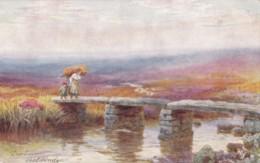 AP78 Dartmoor, Post Bridge By HB Wimbush - Tuck Oilette - Ilfracombe