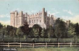 AP78 Arundel Castle - 1907 Hartmann Postcard - Arundel