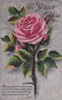 AR72 Greetings - To Greet You - Birthday, Pink Rose - Birthday