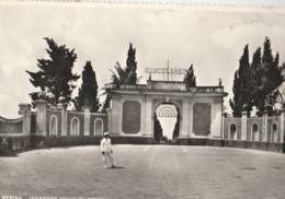 Cartolina - Postcard /   Viaggiata - Sent /  Resina, Ingresso Scavi Di  Ercolano  ( Gran Formato ) - Ercolano