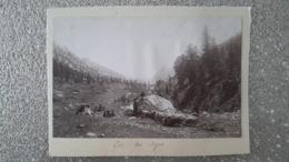 PHOTO COLLEE SUR CARTON - COL DES AYES 38 ISERE - LA CHARTREUSE - BERGER ET SON TROUPEAU DE MOUTONS - Plaatsen
