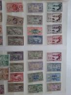 Saint Pierre Et Miquelon,  Guyane,  Tchad - Collections
