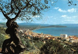 Cartolina Formia Panorama Di Levante 1966 - Latina