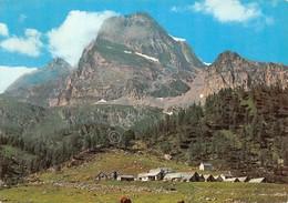 Cartolina Alpe Veglia Casolari Di Cianciavero Monte Leone Timbro Ristoro Di Font - Verbania