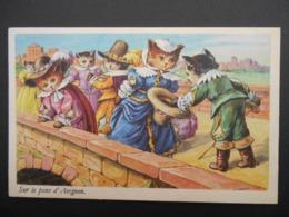"""Chats Habillés Illustrant Comptine """"Sur Le Pont D'Avignon"""" - Katten"""