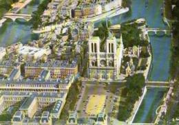 CP 75 Paris Ile De La Cité Cathédrale Notre Dame Parvis En Avion Sur 139 Leconte - Frankreich