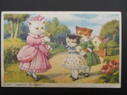 "Chats Habillés Illustrant Comptine ""Gentil Coquelicot Mesdames !"" - Katten"