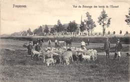 Passy-Froyennes - Vue Du Paturage Des Bords De L'Escaut - Doornik
