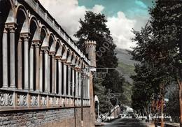 Cartolina Ormea Viale Isola Colombina - Cuneo
