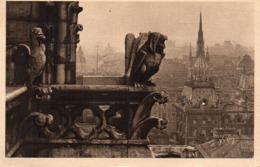 CP 75 Paris Notre Dame Cathédrale Détail Façade Nord Sainte Chapelle En Flanant 127 Yvon - Notre Dame De Paris