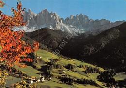 Cartolina Santa Maddalena Chiesetta Con Le Odle Val Di Funes - Bolzano (Bozen)