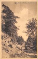 Chaumont-Gistoux - Chemin Du Ronvau - Chaumont-Gistoux