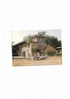 Carte Postale En Parcourant Le Gers  (30) Troupeau D'oies à La Ferme - Unclassified