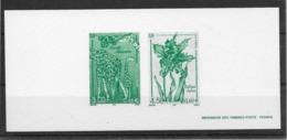 Thème Animaux - Girafe - épreuve De La Poste - Giraffes
