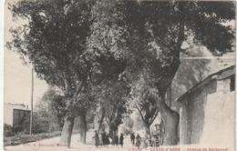 76 Cuxac D'Aude. Avenue De Narbonne - France