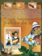 Guinea 2008 MNH -CELEBRITIES- International Year Of Potatoes, C.Colomb, Ship-Santa Maria. YT 898, Mi 5725/BL1563 - Guinea (1958-...)