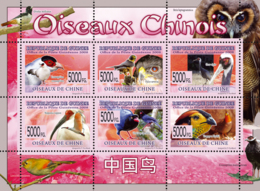 Guinea 2008 MNH-Birds Of Chinese. YT 3870-3875, Mi 6081-6086 - República De Guinea (1958-...)