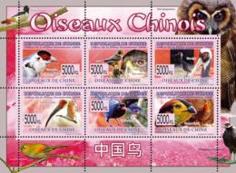 Guinea 2008 MNH-Birds Of Chinese. YT 3870-3875, Mi 6081-6086 - Guinea (1958-...)