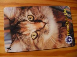 Phonecard Singapore - Cat - Singapour