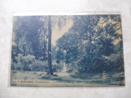 Cpa Bonsecours Les Sous Bois 1933 - Andere