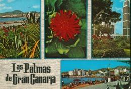 Spain - Las Palmas De Gran Canaria - Gran Canaria