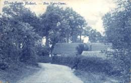 Mont-Saint-Aubert - Bois Notre-Dame - Doornik