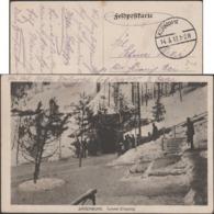 Allemagne 1917. Carte De Franchise Militaire.  Bärenburg (Altenberg, Saxe). Entrée Du Tunnel Sous La Forêt - Trees