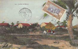 Sénégal - Dakar - Jardins De Médina - Sénégal