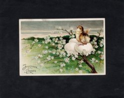 CPA - JOYEUSES PAQUES - Carte Légèrement Gauffrée -  Oeuf Et Oisillon Dans Un Arbre En Fleur - Easter