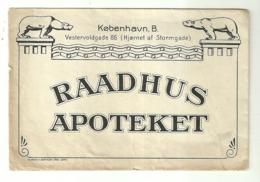 """5624 """"RAADHUS APOTEKET-FORSENDELSE AF MEDICIN-OVERALT I DANMARK OG UDLANDET""""BUSTA  ORIGINALE - Non Classés"""