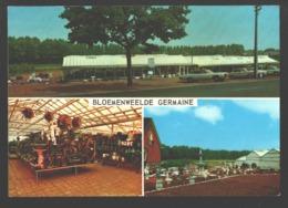 Aarschot - Bloemenweelde Germaine - Multiview - Classic Cars - Aarschot