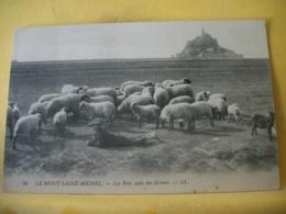 50 7840 CPA 1910 - 50 LE MONT ST MICHEL. LES PRES SALES DES GREVES. EDIT. LL. N° 26. ANIMATION TROUPEAU MOUTONS ET PATRE - Le Mont Saint Michel