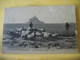 50 7848 CPA - 50 LE MONT ST MICHEL. LES PRES SALES DES GREVES. EDIT. LL. N° 25. ANIMATION TROUPEAU DE MOUTONS ET BERGERS - Le Mont Saint Michel