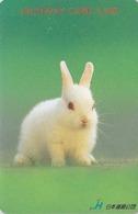 Carte Prépayée Japon - ANIMAL - LAPIN - RABBIT Japan Prepaid Card - KANINCHEN - KONIJN - CONEJO - HW 290 - Konijnen