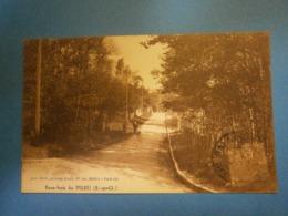 Sous Bois De Pileu Essonne 91,voyagée Environ 1919,,très Bel état - Palaiseau