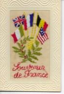 Carte Brodée SOUVENIR DE FRANCE  état Neuf SUP - Unclassified