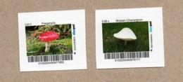 BRD - Privatpost Biberpost - Pilze - Fliegenpilz (Amanita Muscaria)  Und Wiesen-Champignon (Agaricus Campestris) - BRD