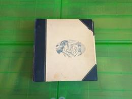 Lot N° TH.1041 BELGIQUE Collection Moderne   Neufs ** - Briefmarken