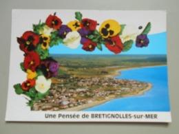 VENDEE UNE PENSEE DE BRETIGNOLLES SUR MER - Bretignolles Sur Mer