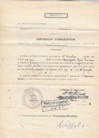 Certificat D'inscription St Nicolas / Etapen-Insection Gent - WW I