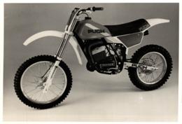 Puch Rotax +-18cm X 12cm  Moto MOTOCROSS MOTORCYCLE Douglas J Jackson Archive Of Motorcycles - Sonstige