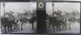 LEIPZIG, 1900 : Augustusplatz. Surréalisme, Montage Photo : 2 Bras Autour D'un Ange. Plaque Verre Stéréoscopique Négatif - Plaques De Verre