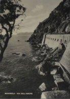 LA SPEZIA - Riomaggiore / Manarola - Via Dell' Amore - 1952 - La Spezia