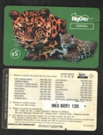 TELEPHONE CARD SPAIN  5 EURO - Télécartes