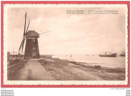 CP DOEL Sur L'Escaut - Aan Schelde  : Ancien Moulin à  Vent - Windmolen - Non Classés