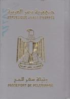 EGYPT SAUDI ARABIA 2001 PASSPORT HAJJ PELERINAGE WITH ENTRY POSTMARKS & SAUDI VISA - Documents Historiques